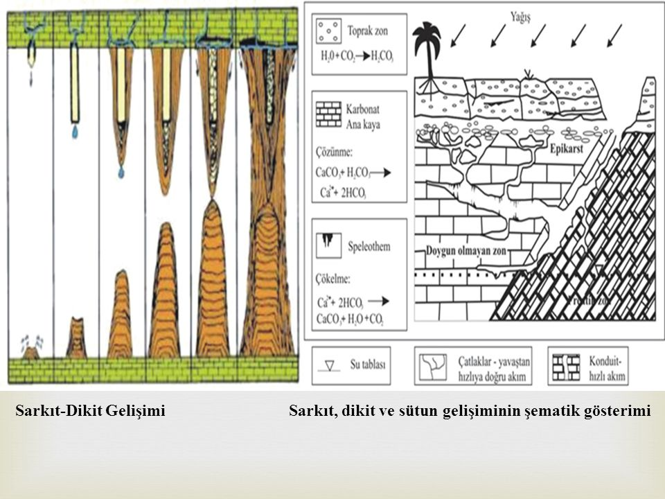 Sarkıt-Dikit Gelişimi Sarkıt, dikit ve sütun gelişiminin şematik gösterimi