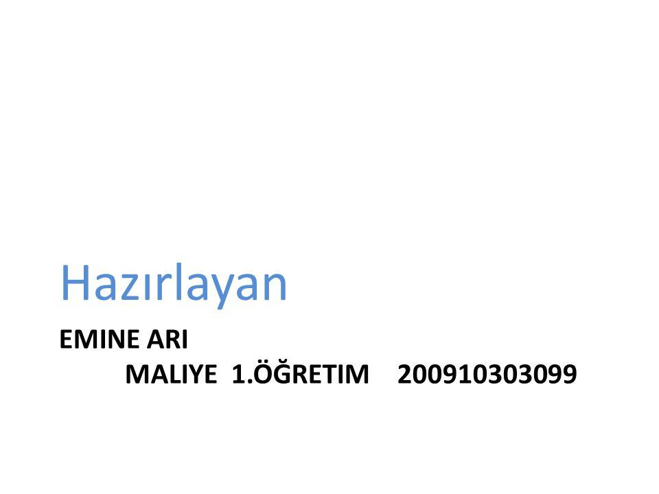 EMINE ARI MALIYE 1.ÖĞRETIM 200910303099 Hazırlayan