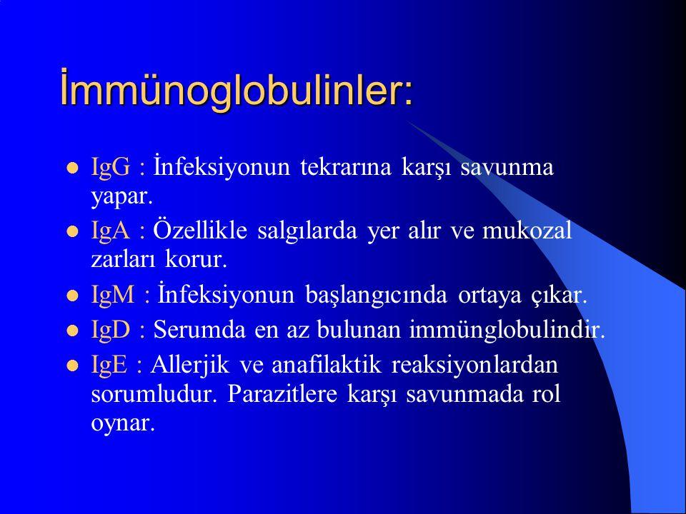 İmmünoglobulinler: IgG : İnfeksiyonun tekrarına karşı savunma yapar. IgA : Özellikle salgılarda yer alır ve mukozal zarları korur. IgM : İnfeksiyonun
