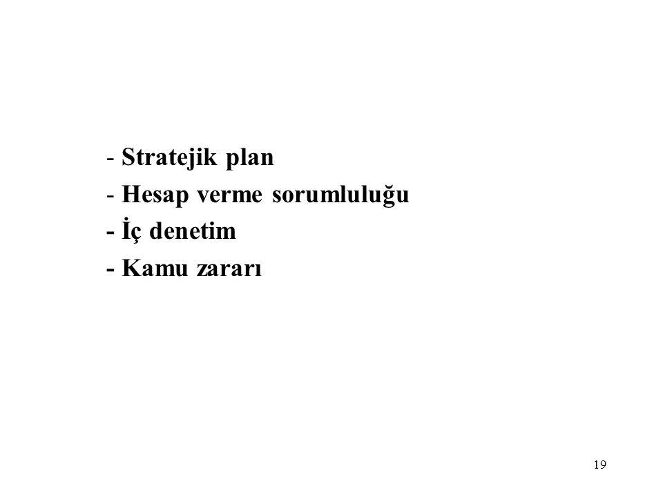 19 - Stratejik plan - Hesap verme sorumluluğu - İç denetim - Kamu zararı