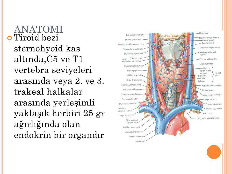 ANATOMİ Tiroid bezi sternohyoid kas altında,C5 ve T1 vertebra seviyeleri arasında veya 2. ve 3. trakeal halkalar arasında yerleşimli yaklaşık herbiri
