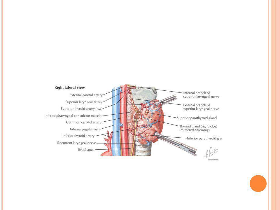 M EDÜLLER K ARSINOM Tiroid kanserlerinin %7 si Daha kötü seyirli Ortalama 50 yaş Parafoliküler C hücreleri kaynaklı Sıklıkla tek bir nodül olarak gözlenir Karsinom olusmadan önceki dönemde C hücrelerinde hiperplazi olusur Kalsitonin salınır Ailesel ve sporadik (%80),MEN IIA ve MENIIB olmak üzere 4 klinik şekli vardır.