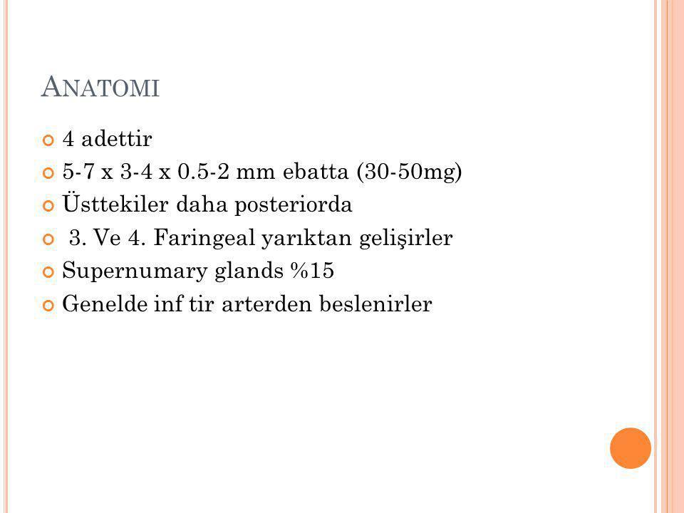 A NATOMI 4 adettir 5-7 x 3-4 x 0.5-2 mm ebatta (30-50mg) Üsttekiler daha posteriorda 3. Ve 4. Faringeal yarıktan gelişirler Supernumary glands %15 Gen