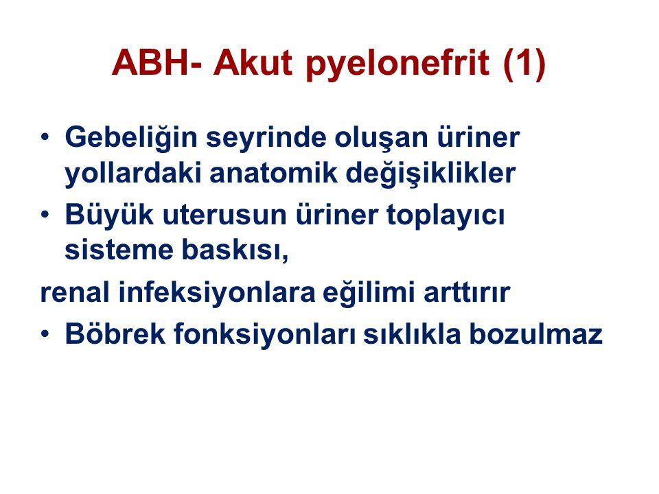 ABH- Akut pyelonefrit (1) Gebeliğin seyrinde oluşan üriner yollardaki anatomik değişiklikler Büyük uterusun üriner toplayıcı sisteme baskısı, renal infeksiyonlara eğilimi arttırır Böbrek fonksiyonları sıklıkla bozulmaz