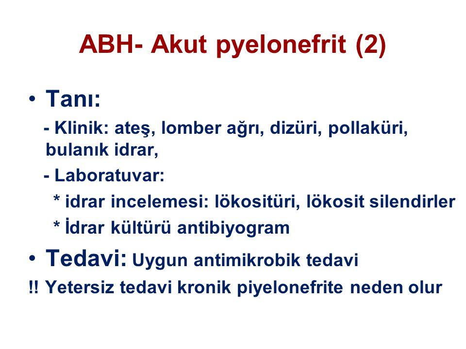ABH- Akut pyelonefrit (2) Tanı: - Klinik: ateş, lomber ağrı, dizüri, pollaküri, bulanık idrar, - Laboratuvar: * idrar incelemesi: lökositüri, lökosit silendirler * İdrar kültürü antibiyogram Tedavi: Uygun antimikrobik tedavi !.