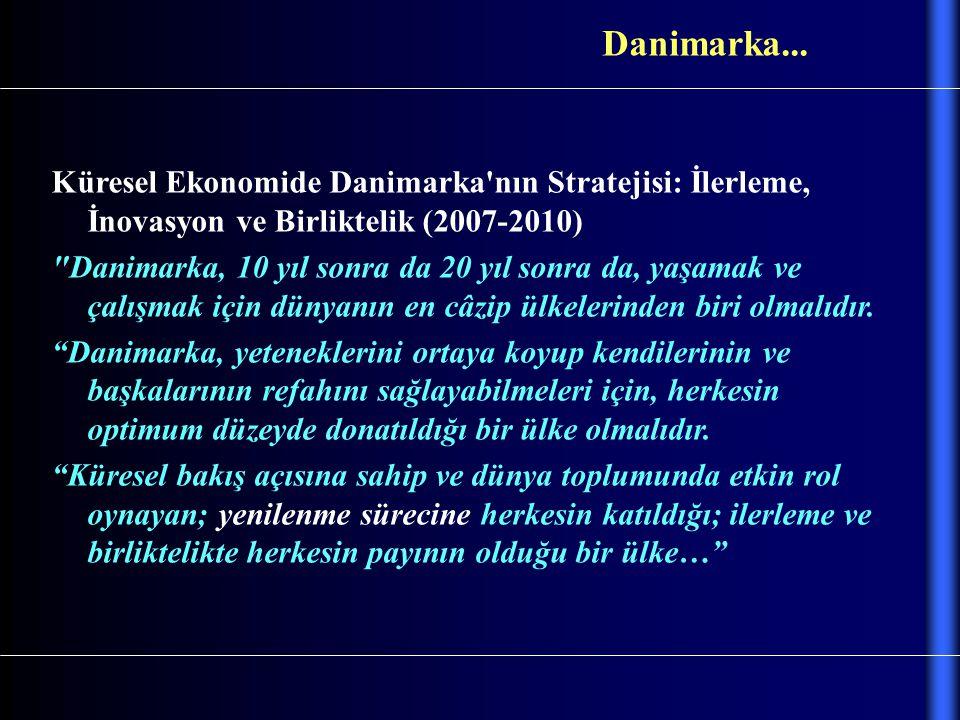 Küresel Ekonomide Danimarka'nın Stratejisi: İlerleme, İnovasyon ve Birliktelik (2007-2010)