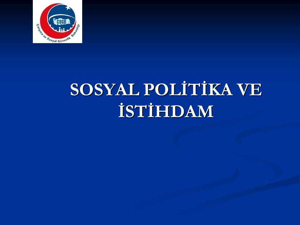 AB Sosyal Politika Müktesebatı ve Türkiye AB müktesebatının Türk mevzuatına aktarılması konusunda önemli adımlar atılmıştır.