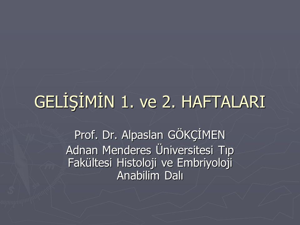 GELİŞİMİN 1. ve 2. HAFTALARI Prof. Dr. Alpaslan GÖKÇİMEN Adnan Menderes Üniversitesi Tıp Fakültesi Histoloji ve Embriyoloji Anabilim Dalı
