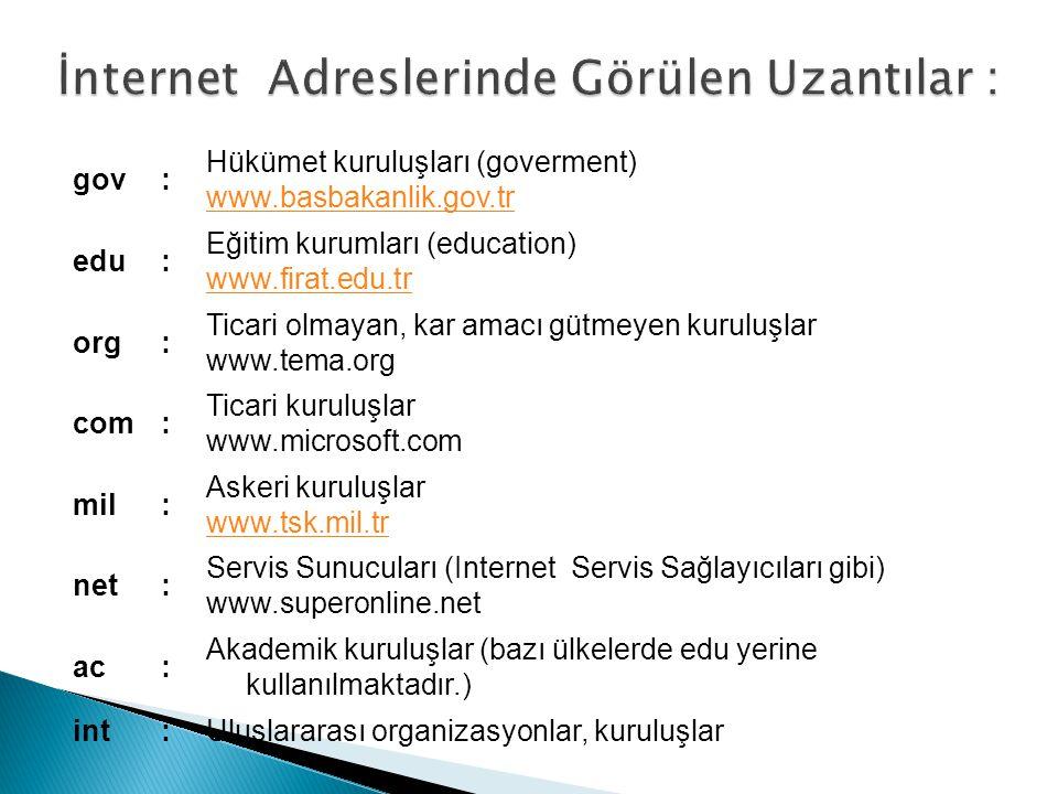 gov: Hükümet kuruluşları (goverment) www.basbakanlik.gov.tr edu: Eğitim kurumları (education) www.firat.edu.tr org: Ticari olmayan, kar amacı gütmeyen