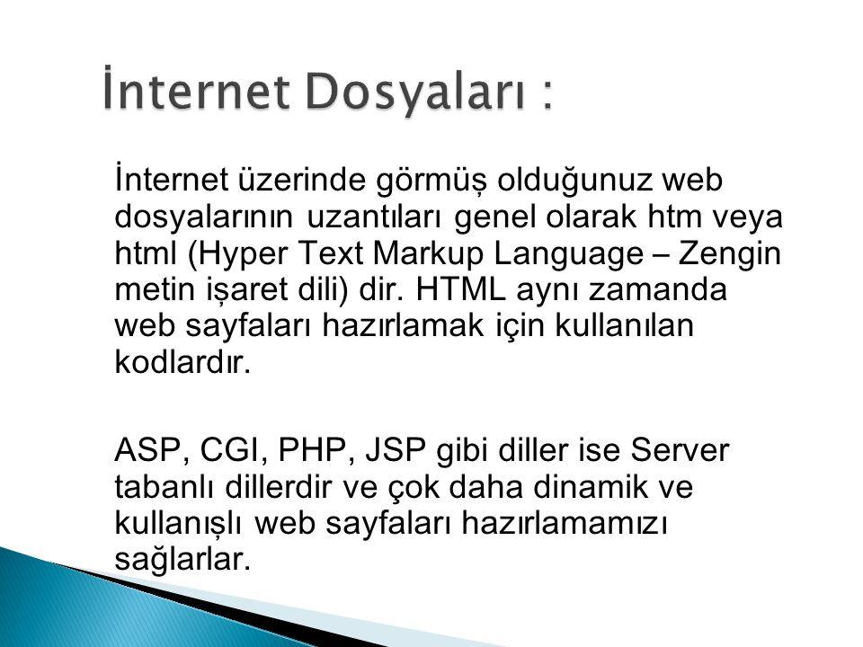 İnternet üzerinde görmüş olduğunuz web dosyalarının uzantıları genel olarak htm veya html (Hyper Text Markup Language – Zengin metin işaret dili) dir.