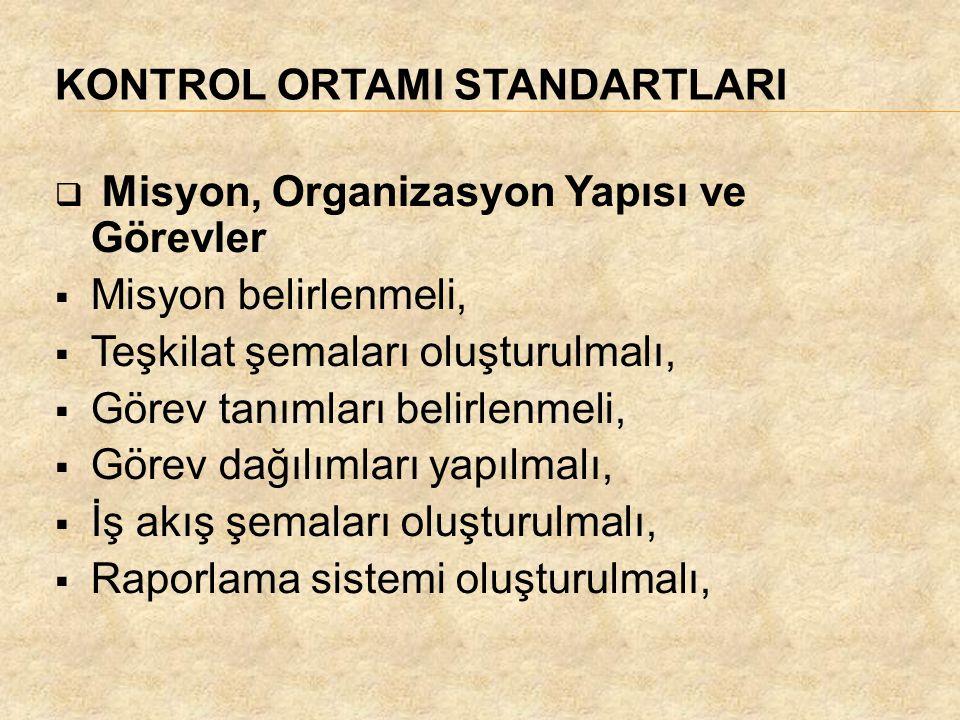 KONTROL ORTAMI STANDARTLARI  Misyon, Organizasyon Yapısı ve Görevler  Misyon belirlenmeli,  Teşkilat şemaları oluşturulmalı,  Görev tanımları beli