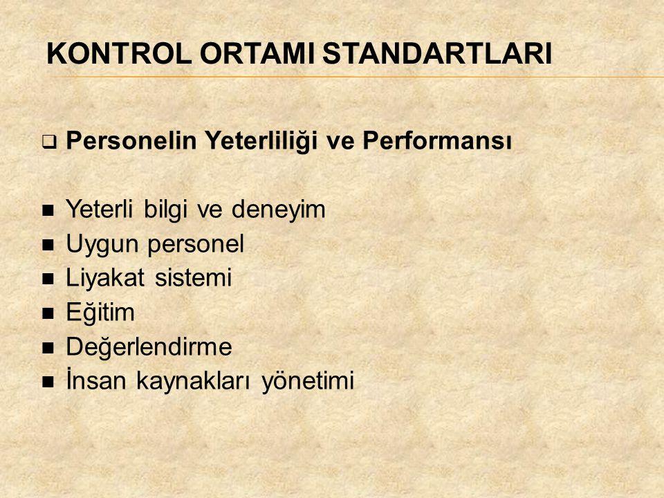 KONTROL ORTAMI STANDARTLARI  Personelin Yeterliliği ve Performansı Yeterli bilgi ve deneyim Uygun personel Liyakat sistemi Eğitim Değerlendirme İnsan