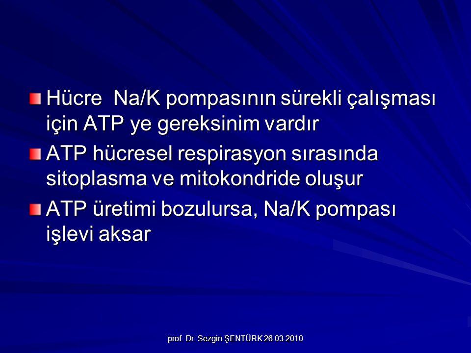prof. Dr. Sezgin ŞENTÜRK 26.03.2010 Hücre Na/K pompasının sürekli çalışması için ATP ye gereksinim vardır ATP hücresel respirasyon sırasında sitoplasm