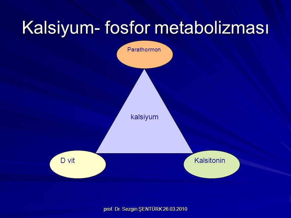 prof. Dr. Sezgin ŞENTÜRK 26.03.2010 Kalsiyum- fosfor metabolizması kalsiyum D vit Parathormon Kalsitonin