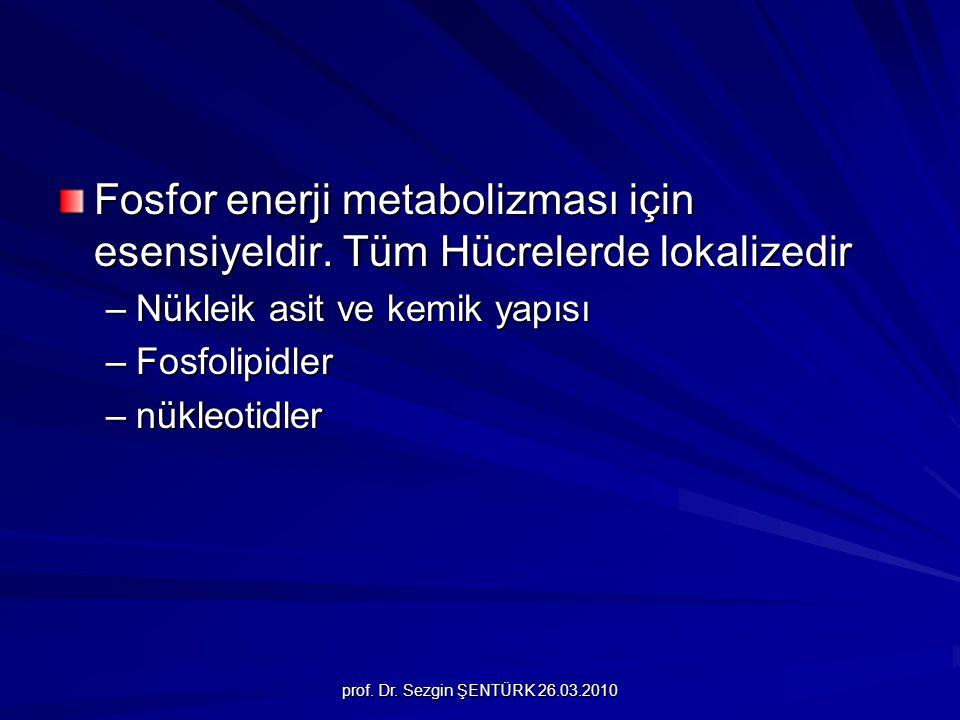 prof. Dr. Sezgin ŞENTÜRK 26.03.2010 Fosfor enerji metabolizması için esensiyeldir. Tüm Hücrelerde lokalizedir –Nükleik asit ve kemik yapısı –Fosfolipi