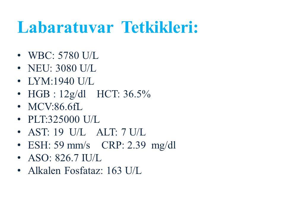 Labaratuvar Tetkikleri: WBC: 5780 U/L NEU: 3080 U/L LYM:1940 U/L HGB : 12g/dl HCT: 36.5% MCV:86.6fL PLT:325000 U/L AST: 19 U/L ALT: 7 U/L ESH: 59 mm/s CRP: 2.39 mg/dl ASO: 826.7 IU/L Alkalen Fosfataz: 163 U/L