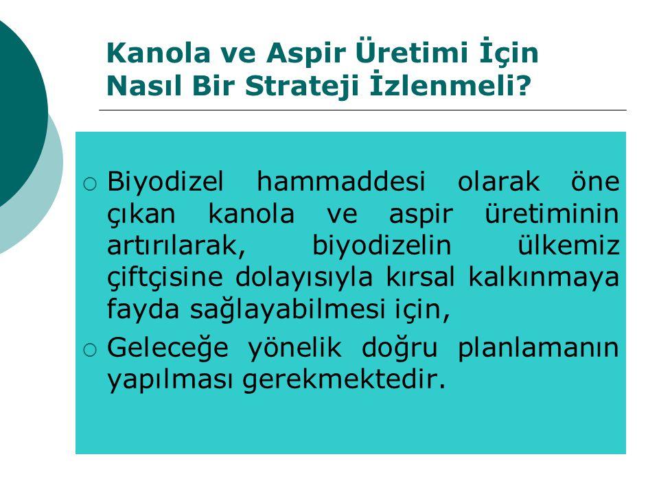 Kanola ve Aspir Üretimi İçin Nasıl Bir Strateji İzlenmeli?  Biyodizel hammaddesi olarak öne çıkan kanola ve aspir üretiminin artırılarak, biyodizelin
