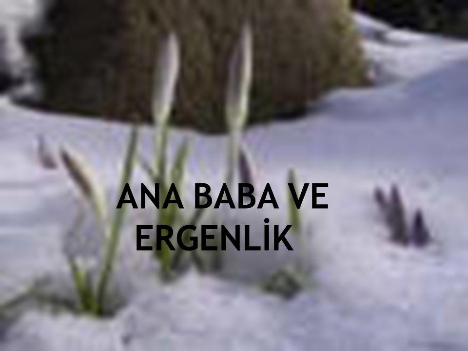 ANA BABA VE ERGENLİK