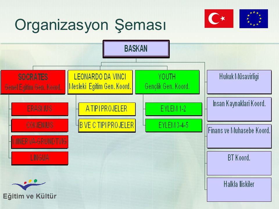Eğitim ve Kültür 23 Organizasyon Şeması