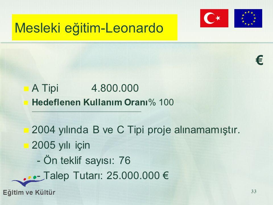Eğitim ve Kültür 33 Mesleki eğitim-Leonardo € A Tipi 4.800.000 Hedeflenen Kullanım Oranı% 100 2004 yılında B ve C Tipi proje alınamamıştır. 2005 yılı
