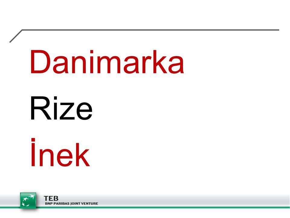 Danimarka Rize İnek