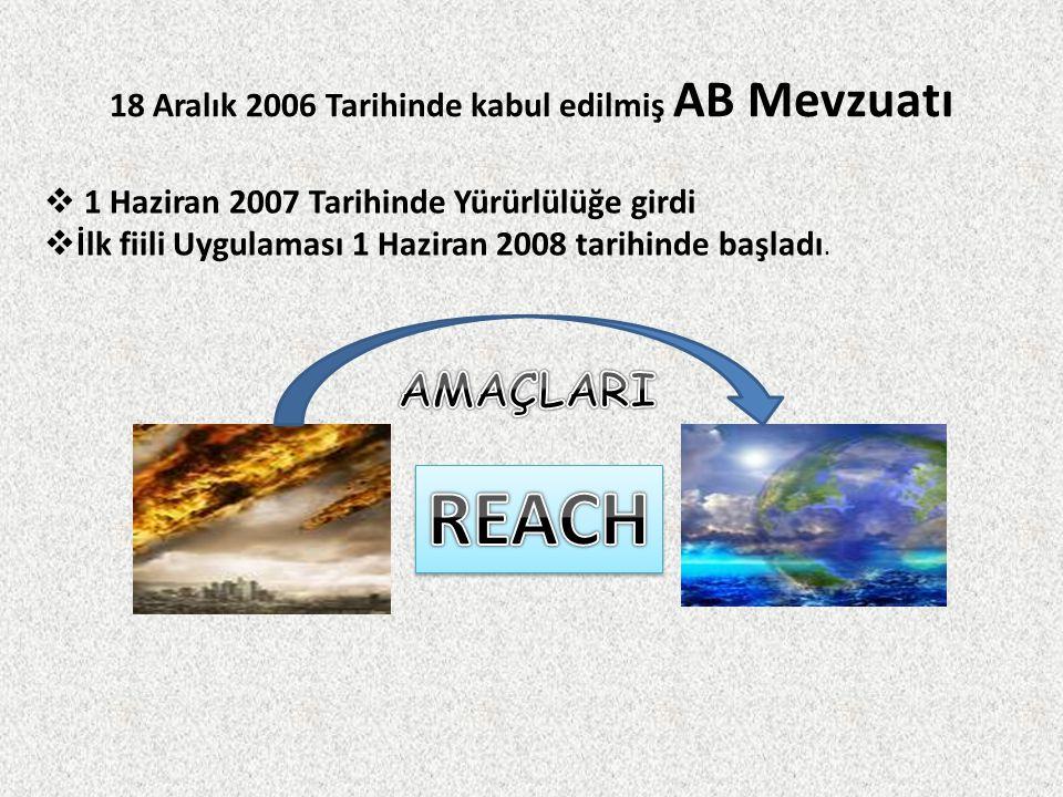 18 Aralık 2006 Tarihinde kabul edilmiş AB Mevzuatı  1 Haziran 2007 Tarihinde Yürürlülüğe girdi  İlk fiili Uygulaması 1 Haziran 2008 tarihinde başlad