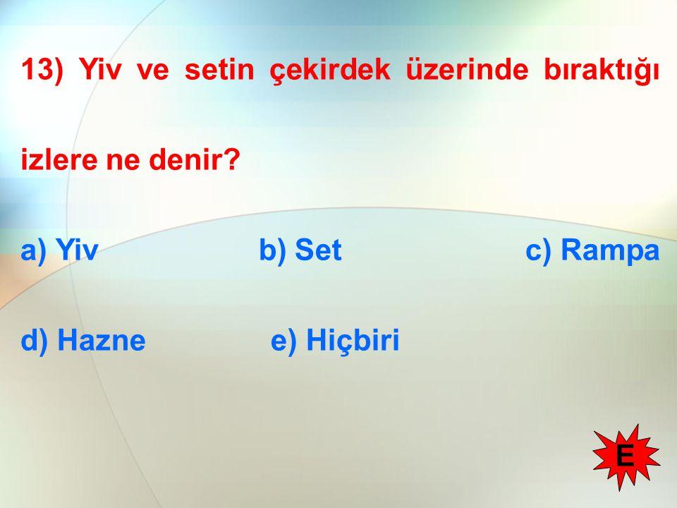 13) Yiv ve setin çekirdek üzerinde bıraktığı izlere ne denir? a) Yiv b) Set c) Rampa d) Hazne e) Hiçbiri E