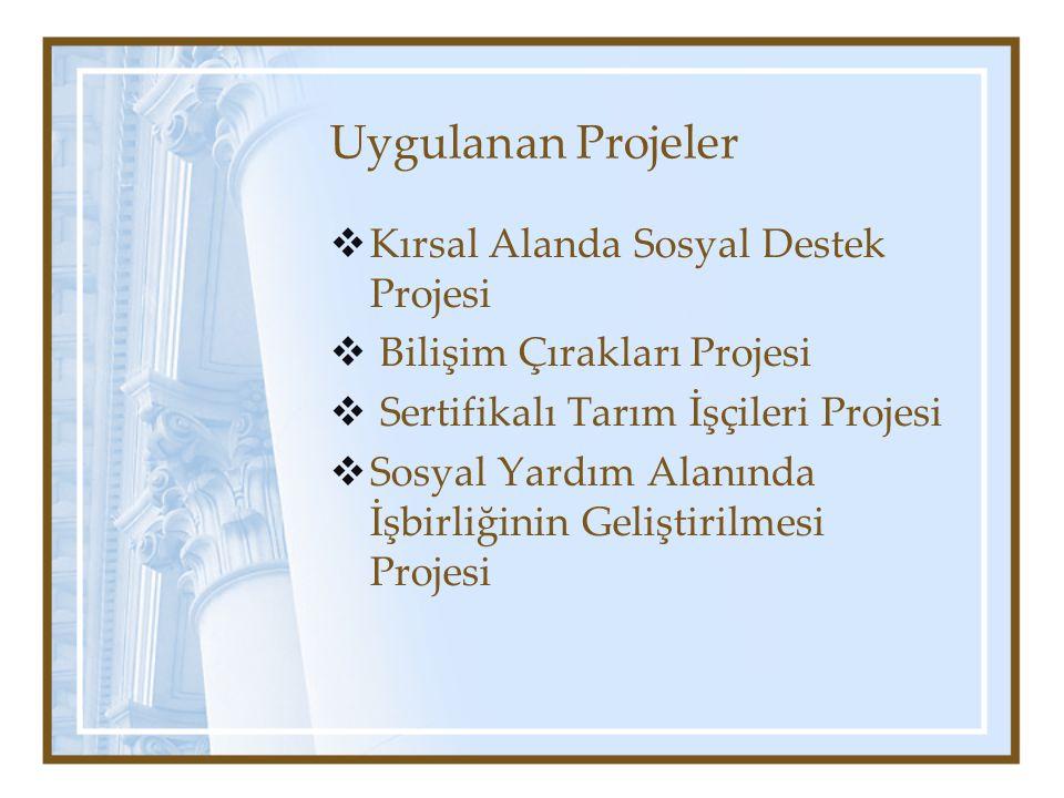 Uygulanan Projeler  Kırsal Alanda Sosyal Destek Projesi  Bilişim Çırakları Projesi  Sertifikalı Tarım İşçileri Projesi  Sosyal Yardım Alanında İşbirliğinin Geliştirilmesi Projesi