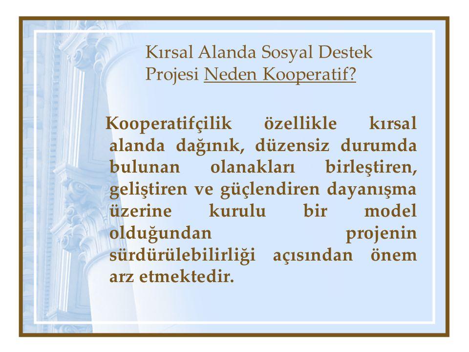 Kırsal Alanda Sosyal Destek Projesi Neden Kooperatif.