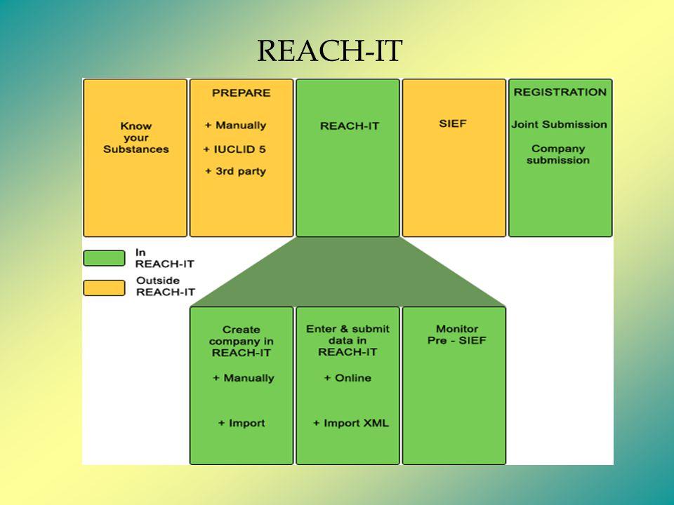 REACH-IT