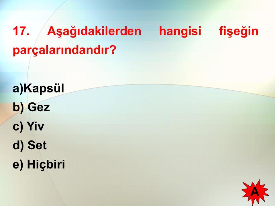 17. Aşağıdakilerden hangisi fişeğin parçalarındandır? a)Kapsül b) Gez c) Yiv d) Set e) Hiçbiri A