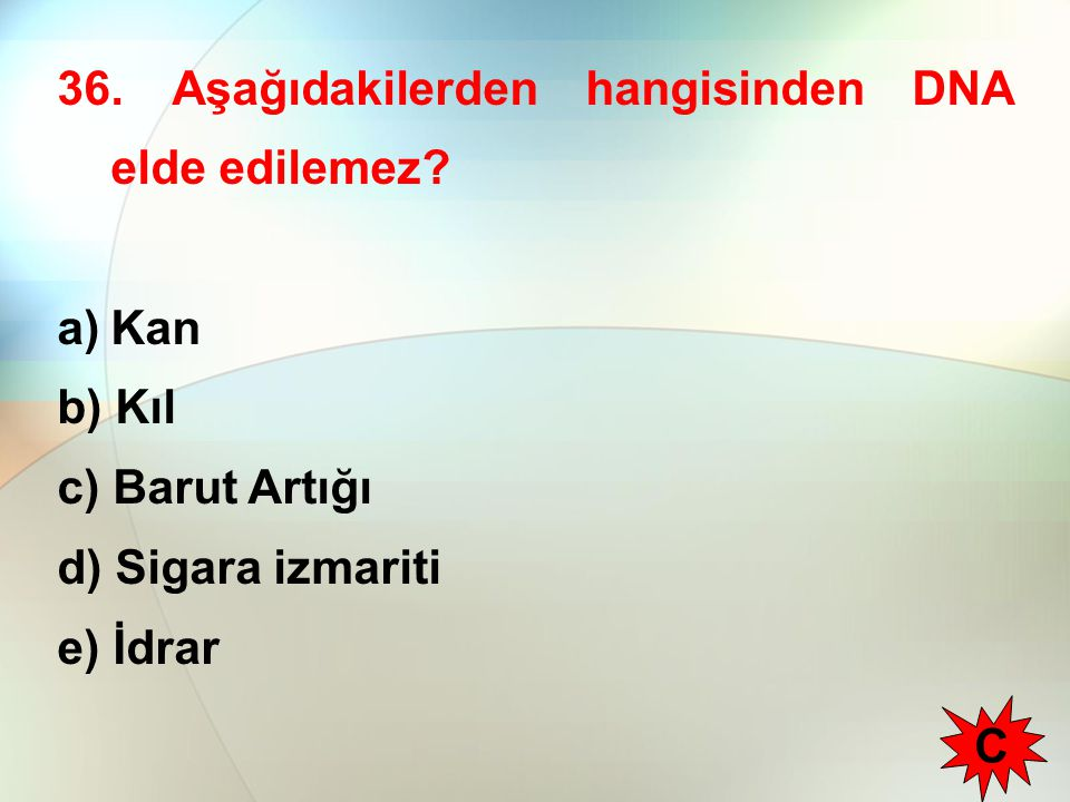 36. Aşağıdakilerden hangisinden DNA elde edilemez? a)Kan b) Kıl c) Barut Artığı d) Sigara izmariti e) İdrar C