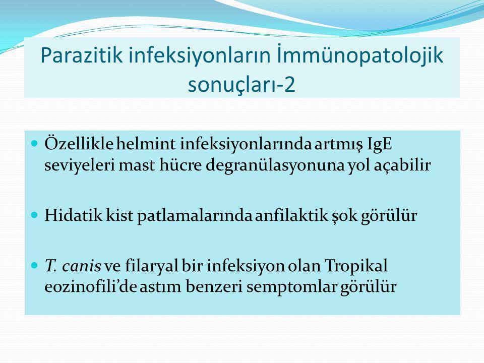 Parazitik infeksiyonların İmmünopatolojik sonuçları-2 Özellikle helmint infeksiyonlarında artmış IgE seviyeleri mast hücre degranülasyonuna yol açabil