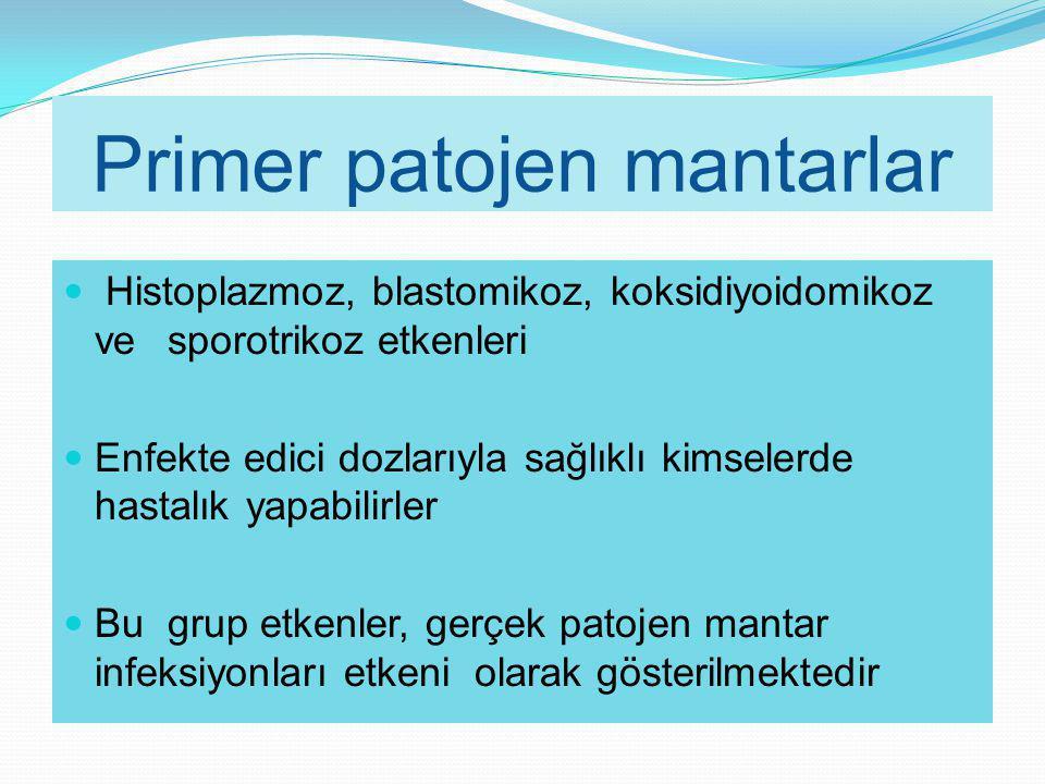 Primer patojen mantarlar Histoplazmoz, blastomikoz, koksidiyoidomikoz ve sporotrikoz etkenleri Enfekte edici dozlarıyla sağlıklı kimselerde hastalık y