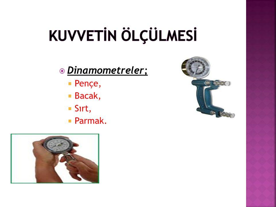  Dinamometreler;  Pençe,  Bacak,  Sırt,  Parmak.