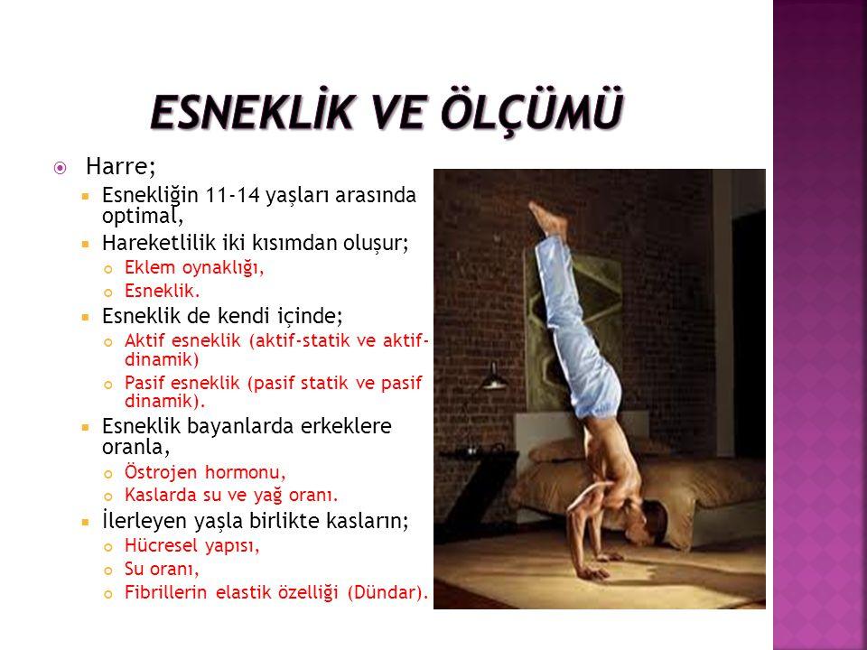  Harre;  Esnekliğin 11-14 yaşları arasında optimal,  Hareketlilik iki kısımdan oluşur; Eklem oynaklığı, Esneklik.