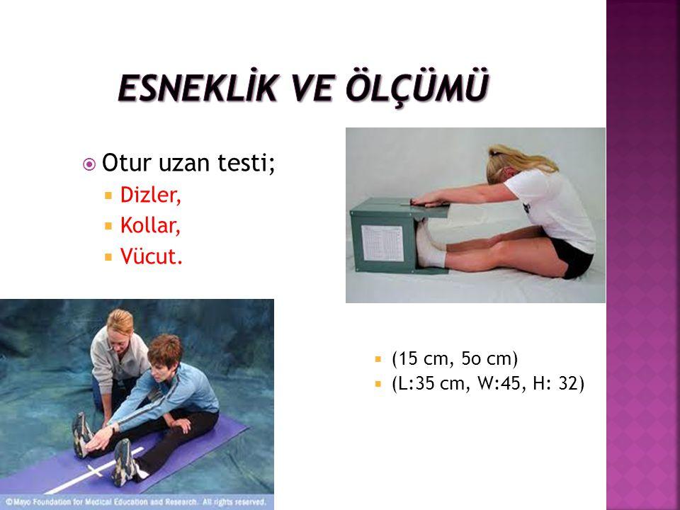  Otur uzan testi;  Dizler,  Kollar,  Vücut.  (15 cm, 5o cm)  (L:35 cm, W:45, H: 32)