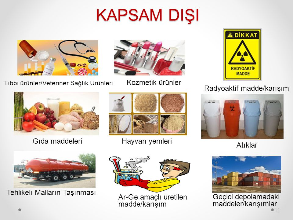 KAPSAM DIŞI Tıbbi ürünler/Veteriner Sağlık Ürünleri Kozmetik ürünler Radyoaktif madde/karışım Hayvan yemleriGıda maddeleri Atıklar Tehlikeli Malların Taşınması Ar-Ge amaçlı üretilen madde/karışım Geçici depolamadaki maddeler/karışımlar 11