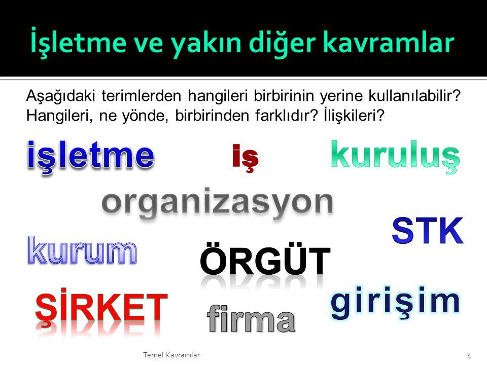  Tam rekabet – ör.Türkiye'de bilgisayar yazılım şirketleri, gıda sektörü (ör.