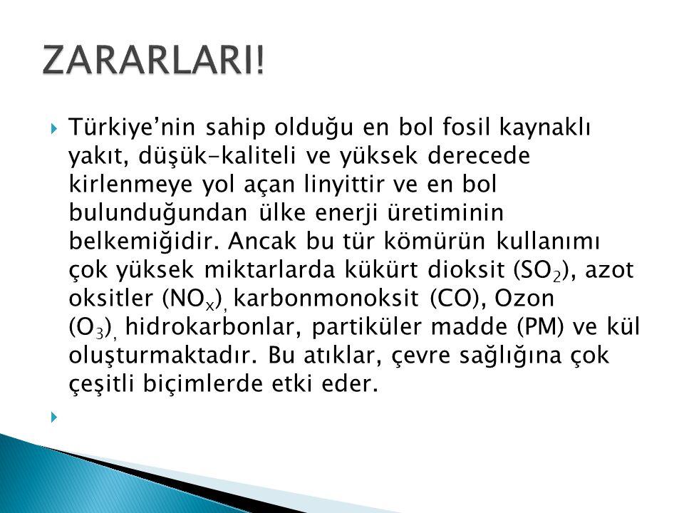  Türkiye'nin sahip olduğu en bol fosil kaynaklı yakıt, düşük-kaliteli ve yüksek derecede kirlenmeye yol açan linyittir ve en bol bulunduğundan ülke e