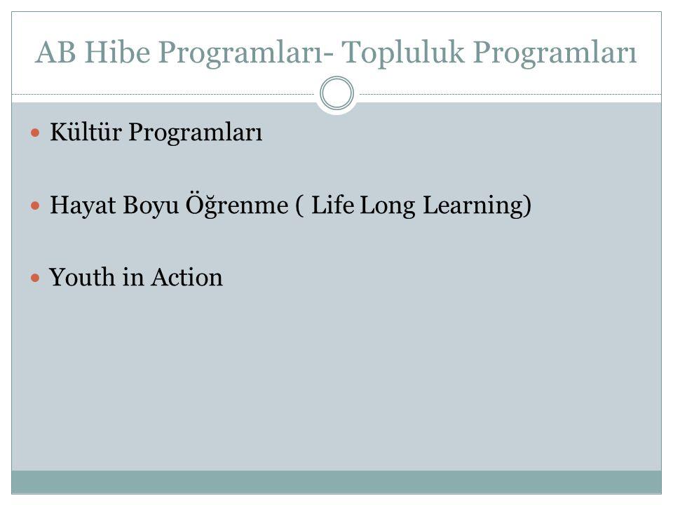 AB Hibe Programları- Topluluk Programları Kültür Programları Hayat Boyu Öğrenme ( Life Long Learning) Youth in Action