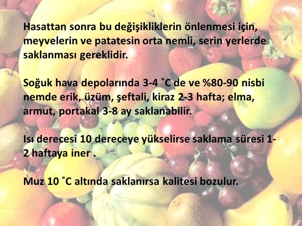 Hasattan sonra bu değişikliklerin önlenmesi için, meyvelerin ve patatesin orta nemli, serin yerlerde saklanması gereklidir. Soğuk hava depolarında 3-4