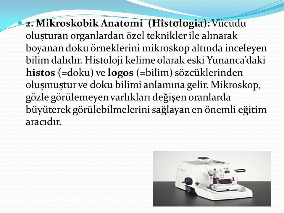 2. Mikroskobik Anatomi (Histologia): Vücudu oluşturan organlardan özel teknikler ile alınarak boyanan doku örneklerini mikroskop altında inceleyen bil