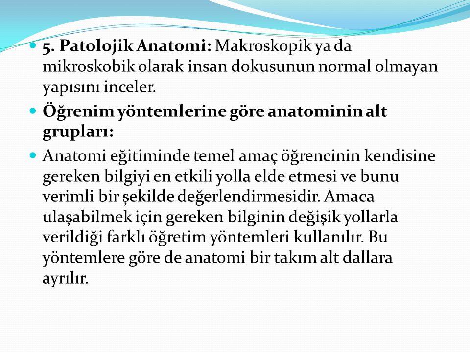 5. Patolojik Anatomi: Makroskopik ya da mikroskobik olarak insan dokusunun normal olmayan yapısını inceler. Öğrenim yöntemlerine göre anatominin alt g