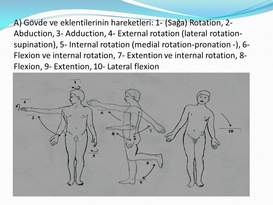 A) Gövde ve eklentilerinin hareketleri: 1- (Sağa) Rotation, 2- Abduction, 3- Adduction, 4- External rotation (lateral rotation- supination), 5- Intern