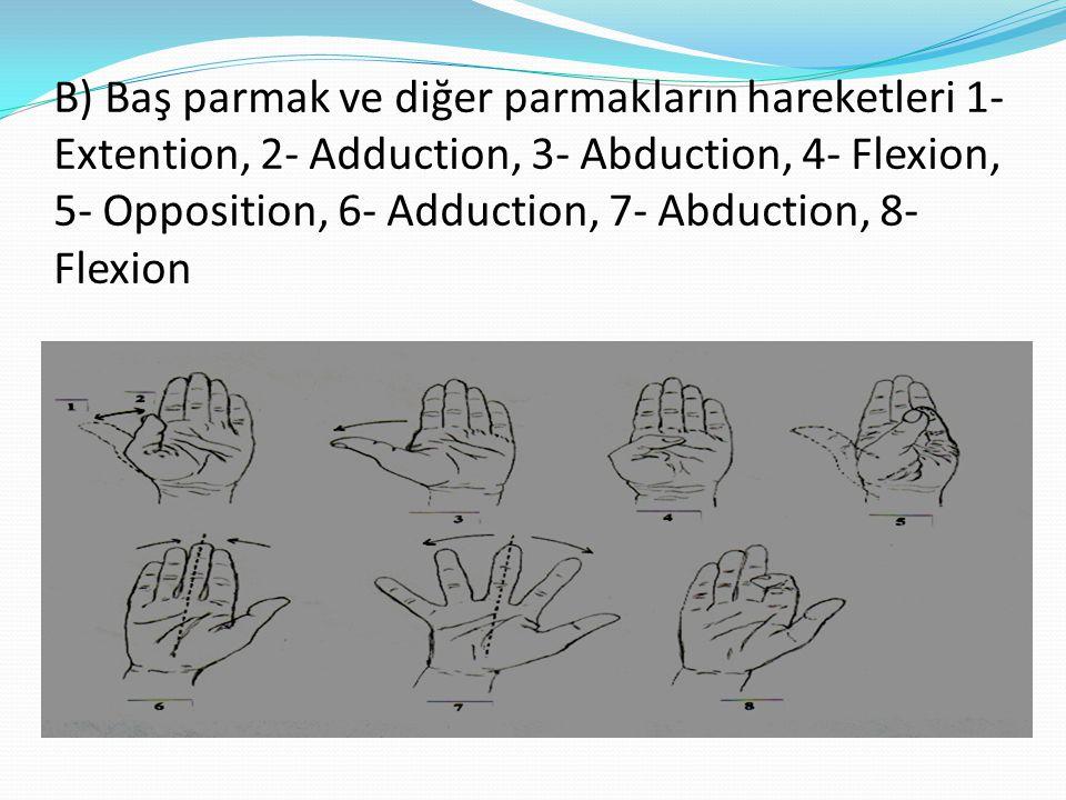 B) Baş parmak ve diğer parmakların hareketleri 1- Extention, 2- Adduction, 3- Abduction, 4- Flexion, 5- Opposition, 6- Adduction, 7- Abduction, 8- Fle