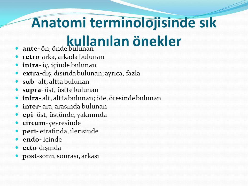 Anatomi terminolojisinde sık kullanılan önekler ante- ön, önde bulunan retro-arka, arkada bulunan intra- iç, içinde bulunan extra-dış, dışında bulunan