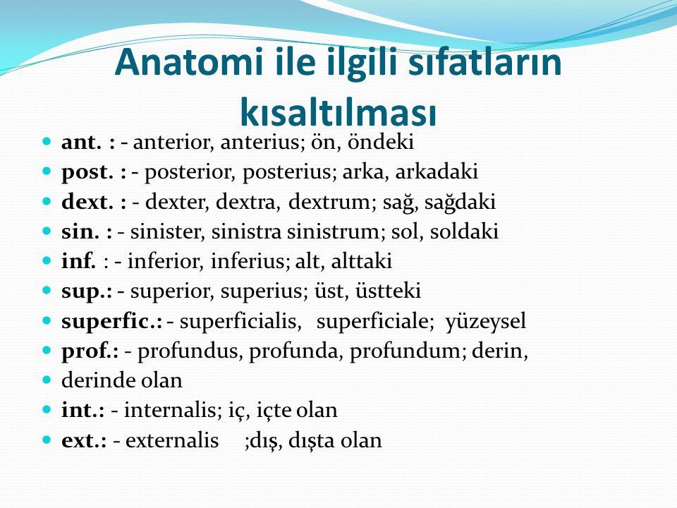 Anatomi ile ilgili sıfatların kısaltılması ant. : - anterior, anterius; ön, öndeki post. : - posterior, posterius; arka, arkadaki dext. : - dexter, de