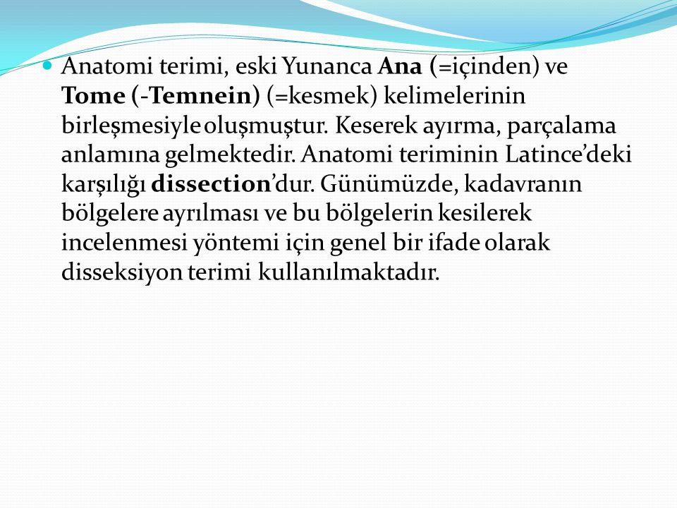 Anatomi terimi, eski Yunanca Ana (=içinden) ve Tome (-Temnein) (=kesmek) kelimelerinin birleşmesiyle oluşmuştur. Keserek ayırma, parçalama anlamına ge
