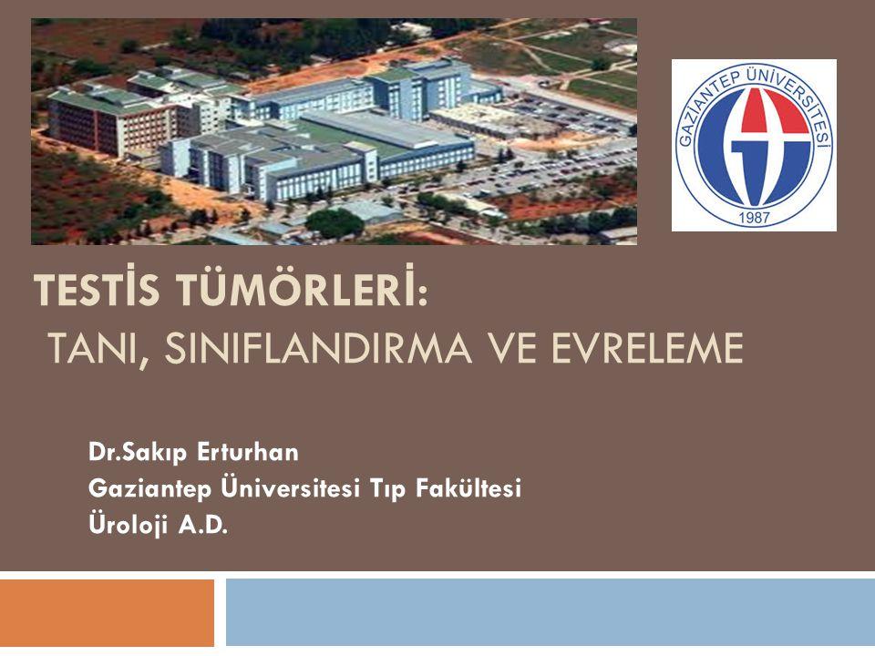 TEST İ S TÜMÖRLER İ : TANI, SINIFLANDIRMA VE EVRELEME Dr.Sakıp Erturhan Gaziantep Üniversitesi Tıp Fakültesi Üroloji A.D.